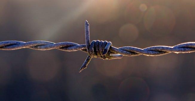 牧草地のフェンス, 有刺鉄線, フェンシング, 注意, 金属, 線, 投獄