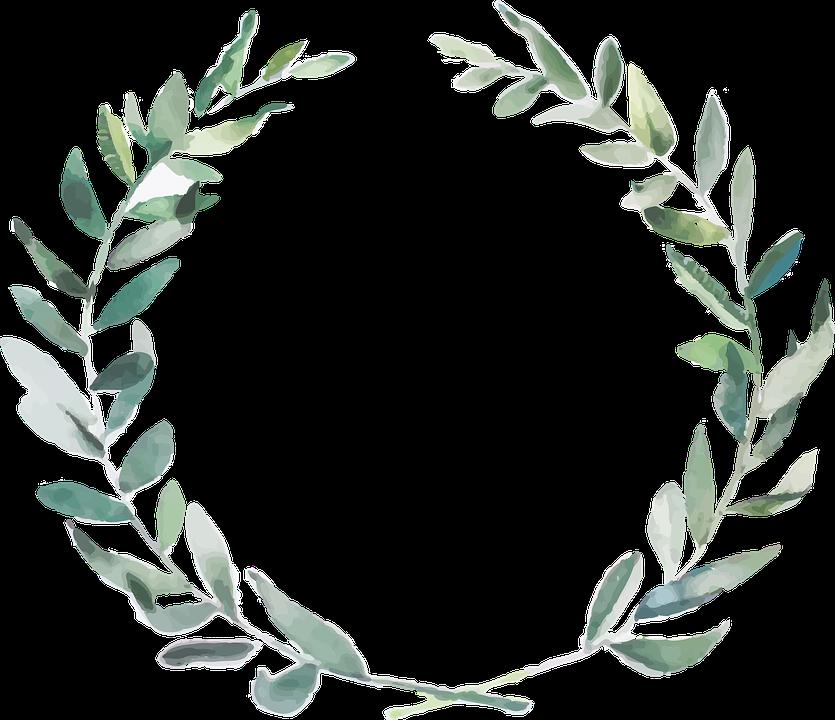 分岐, オリーブ, 自然, 自由奔放に生きるの結婚式, グリーン オリーブ, 地中海, 水彩画