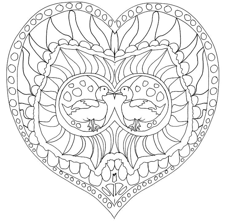 Kalp Aşk Sevgililer Günü Pixabayde ücretsiz Resim