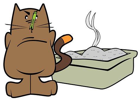 Cartoons, Constipation, Pets, Dirty