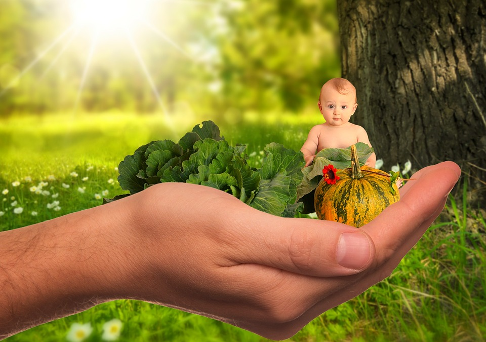 Child, Baby, Vegetables, Fruit, Healthy, Nature