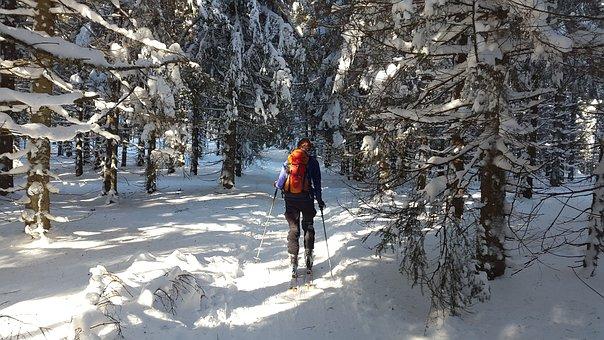 Ski Fuera De Pista, Selva Negra, Esquí