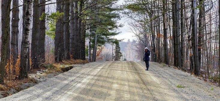 Girl, Walking, Road, Dirt, Pine, Trees