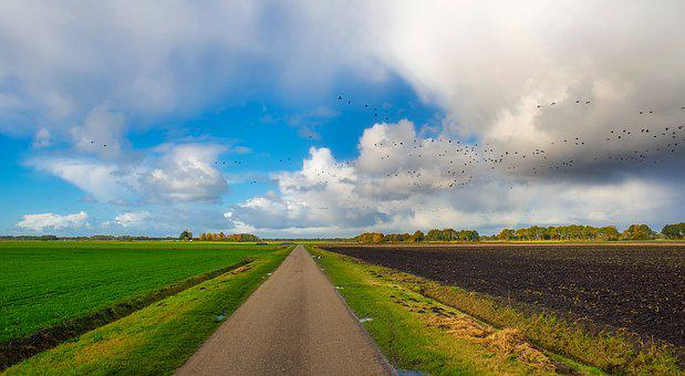 Autumn, Fall, Sky, Clouds, Landscape