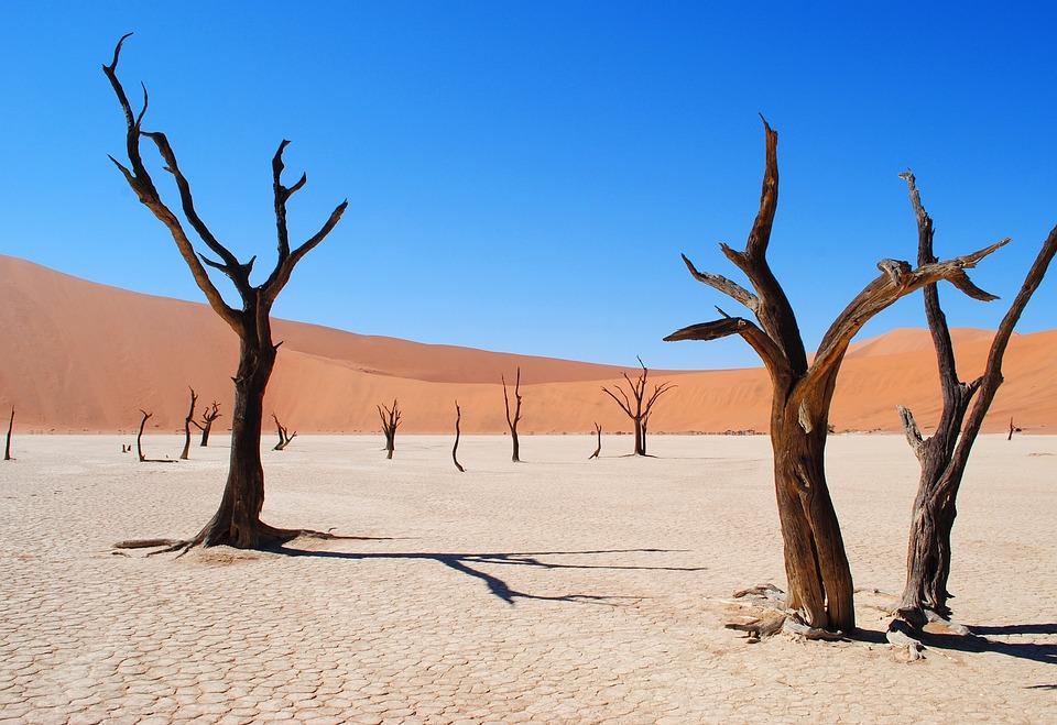 Deadvlei, Namibie, Afrique, Désert, La Sécheresse