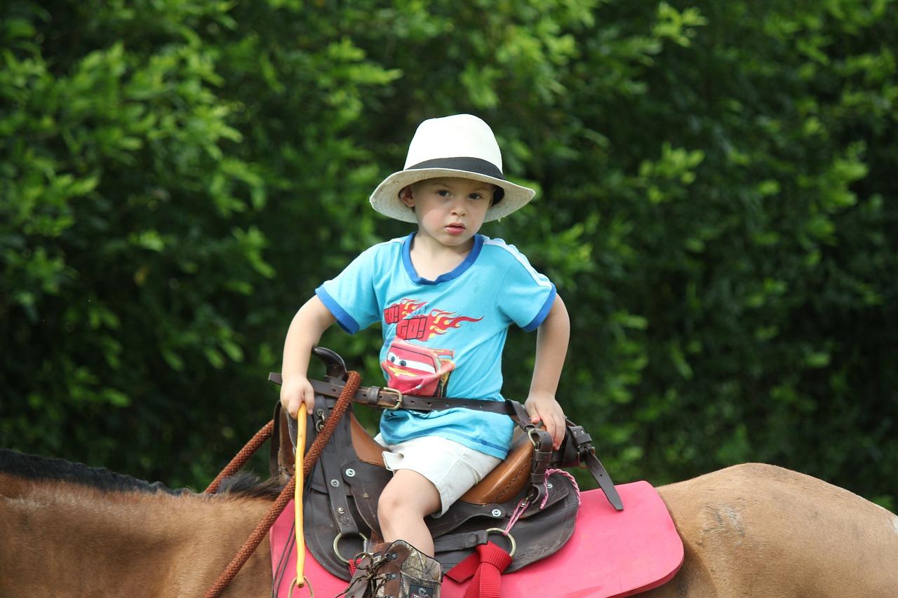 Child Horse Hat - Free photo on Pixabay