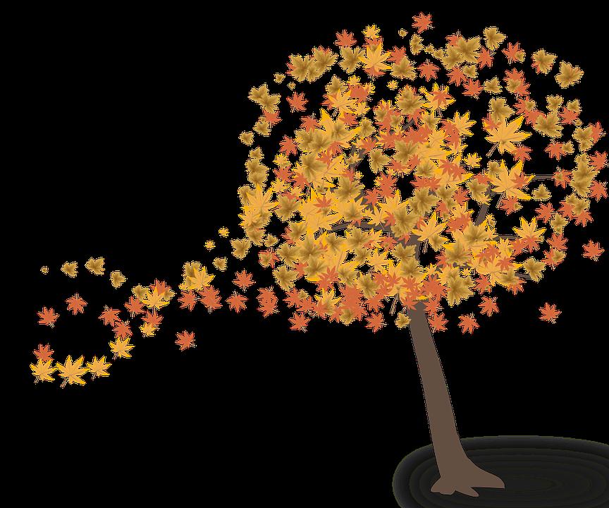 Tree Leaves Autumn · Free Image On Pixabay