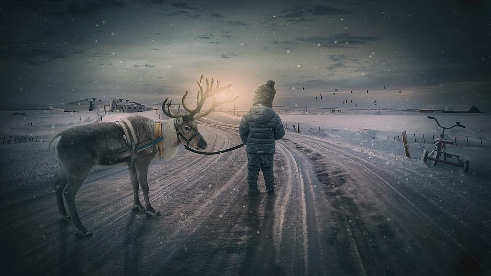 Zimowy, Renifer, Chłopiec, Fairytale, Małe Dziecko