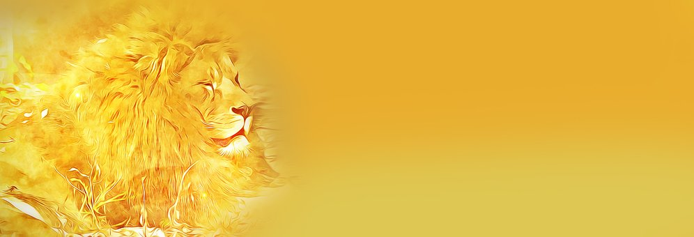Banner, Digital, Graphics, Lion, Yellow