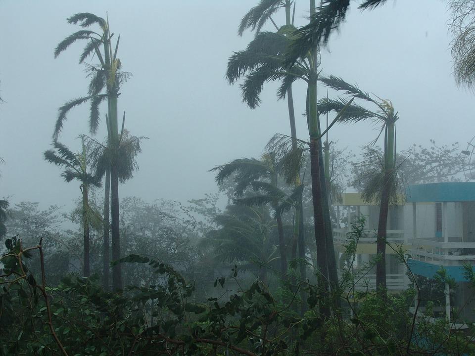 Hurricane, Devastation, Destruction, Natural Disaster