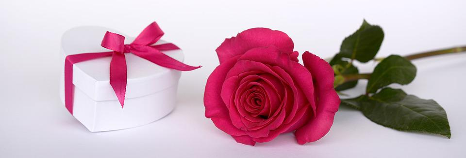 Free photo rose heart gift loop surprise free image on rose heart gift loop surprise give open pink negle Gallery