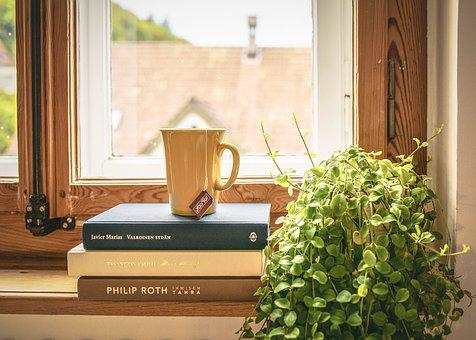 a tall mug of tea resting on three books alongside a plant