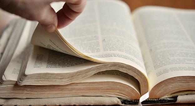 Páginas Del Libro, Biblia, Examinar