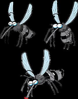 Zika Virus, Dengue, Gnat, Midge