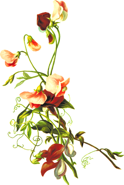 floral flower leaf  u00b7 free vector graphic on pixabay music vector logo music vector images