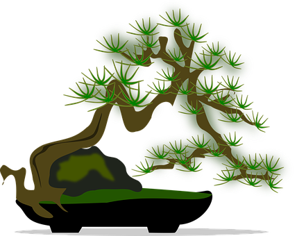 Bonsaï, Clipart, Flore, Nature, Plantes