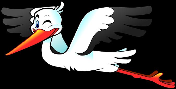 Storch Bilder · Pixabay · Kostenlose Bilder herunterladen