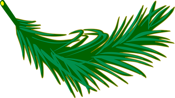palm fronds images pixabay download free pictures rh pixabay com Palm Sunday Clip Art Palm Tree Clip Art