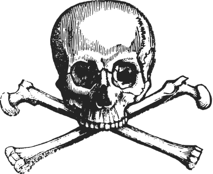 300 Free Skeleton Skull Vectors
