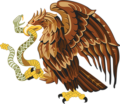 Burung Elang Gambar Vektor Pixabay Unduh Gambar Gratis