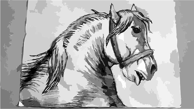 Horse Drawing Animal Free Vector Graphic On Pixabay