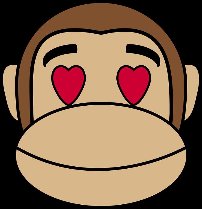 love monkey book