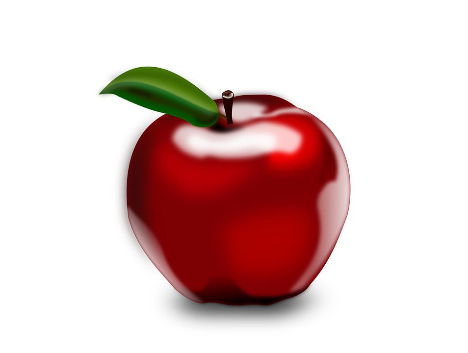 apple fruit. apple, fruit, red, ripe, fresh, organic, food, healthy apple fruit