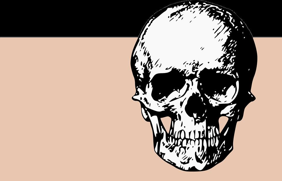 Bones Skull Death · Free vector graphic on Pixabay