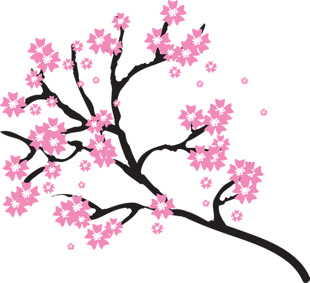Blossoms Branch Cherry · Free Vector Graphic On Pixabay