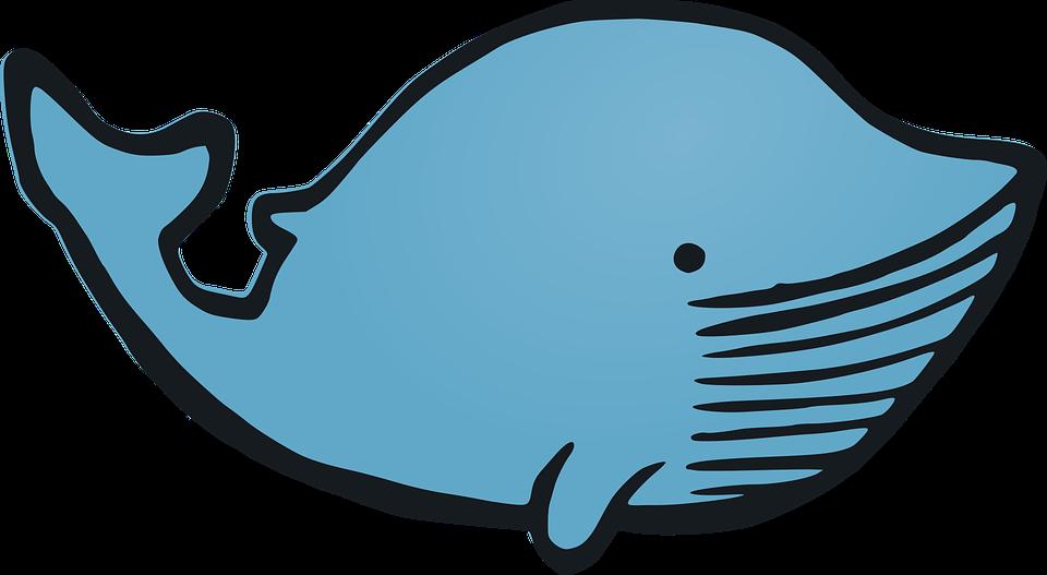 whale animal cartoon happy funny