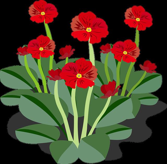 Clip Art Flor Flora \u00b7 Free vector graphic on Pixabay