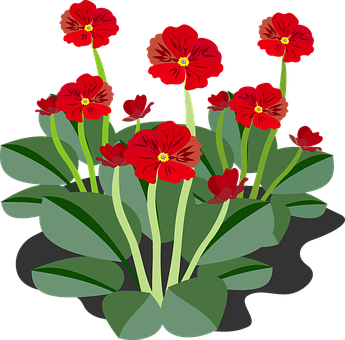 Clip Art Flor Flora Flower Nature Pla