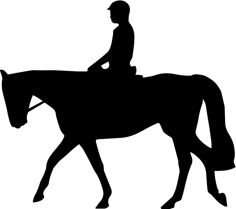Horse, Silhouette - Free images on Pixabay