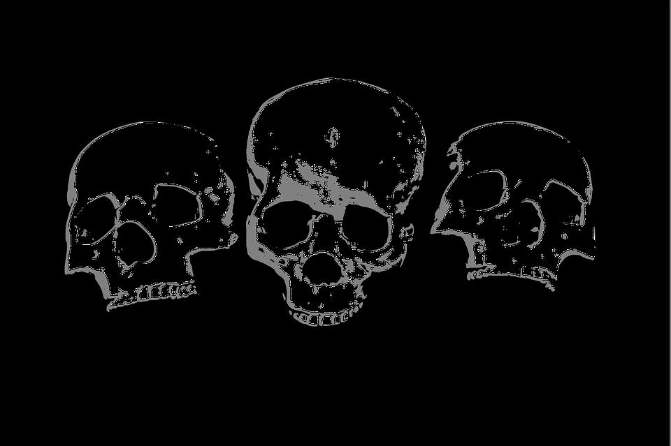 Halloween Horror Skeleton · Free Vector Graphic On Pixabay