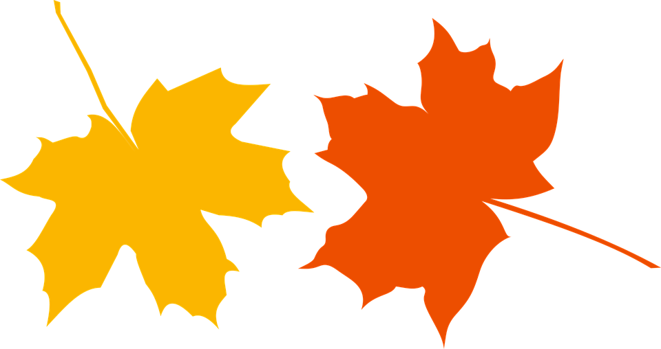autumn defoliation leaf free vector graphic on pixabay rh pixabay com fall leaves vector image fall leaves vector border