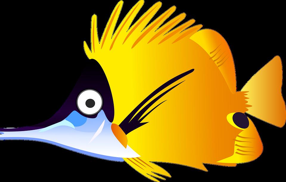 cartoon fish sea free vector graphic on pixabay rh pixabay com cartoon fish skeleton pictures cartoon fish pictures to print