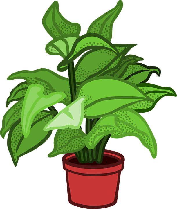 pflanze topf topfpflanze kostenlose vektorgrafik auf pixabay. Black Bedroom Furniture Sets. Home Design Ideas