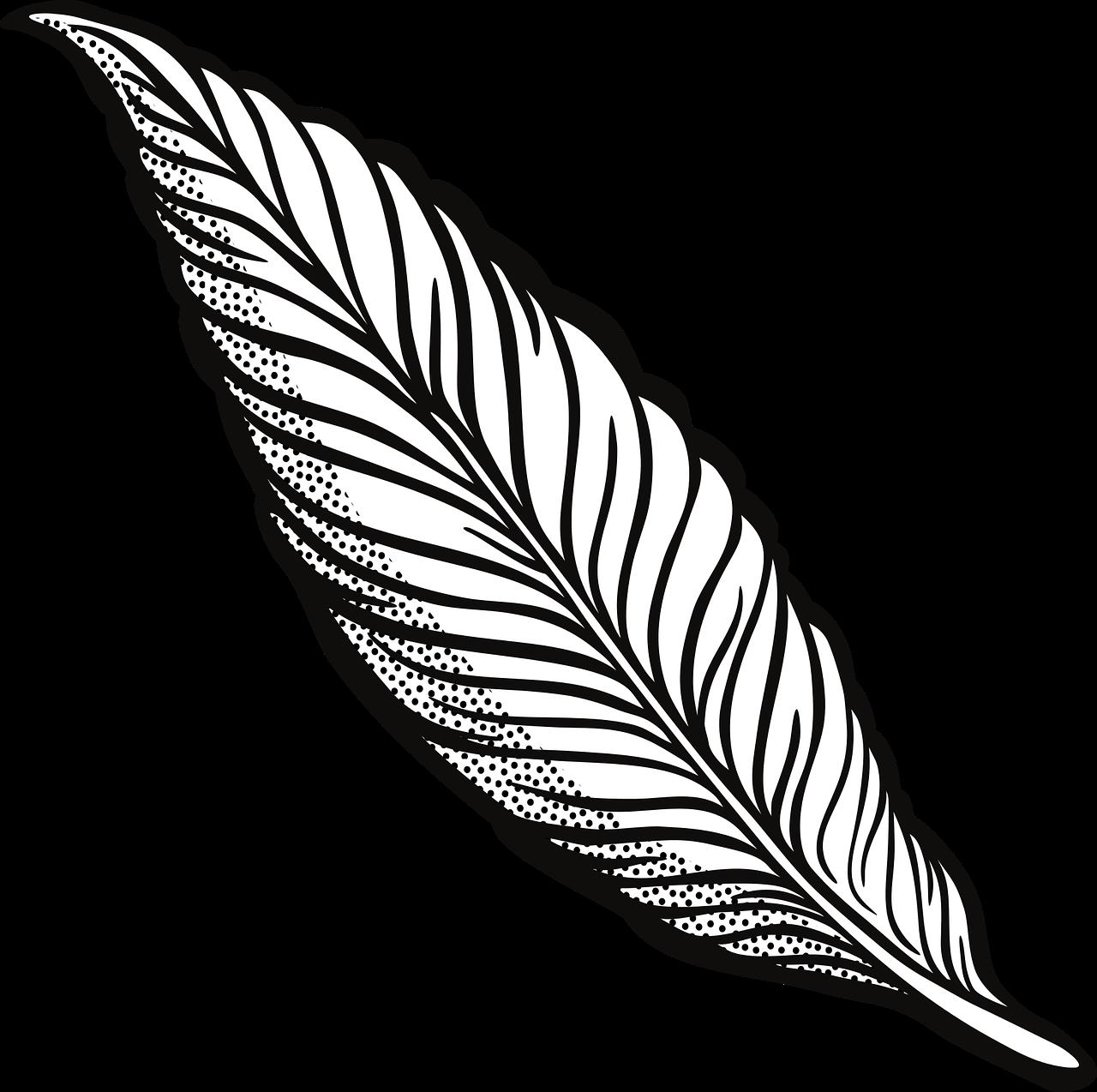 Векторные картинки перьев