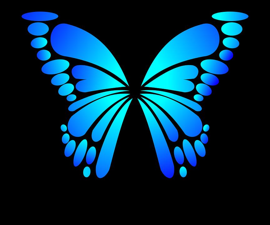Super Image vectorielle gratuite: Papillon, Bleu, Insectes, Été - Image  UT28