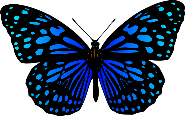 Animal Butterflies Butterfly · Free vector graphic on Pixabay