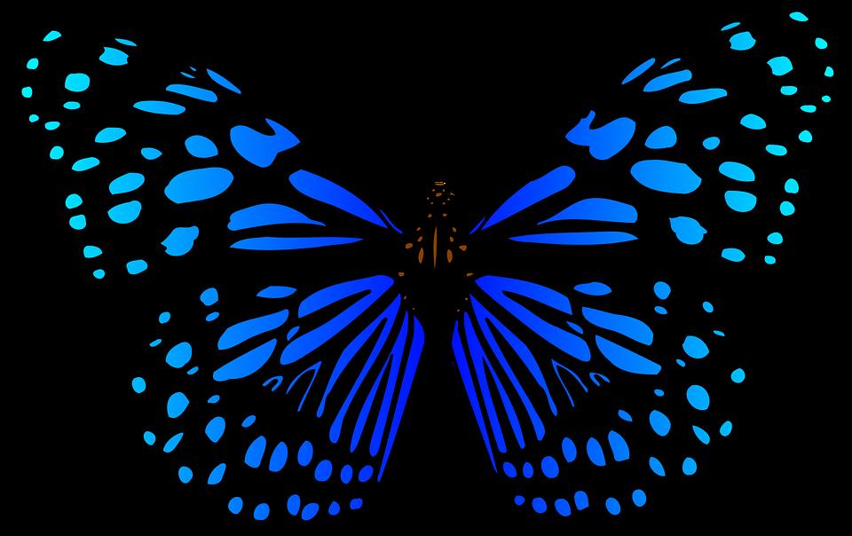 Animales Mariposas Mariposa · Gráficos Vectoriales