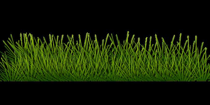 Hintergrund, Grenze, Gras, Grün, Kraut