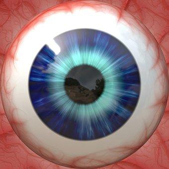 Anatomy, Eye, Eyeball, Sight, Vision