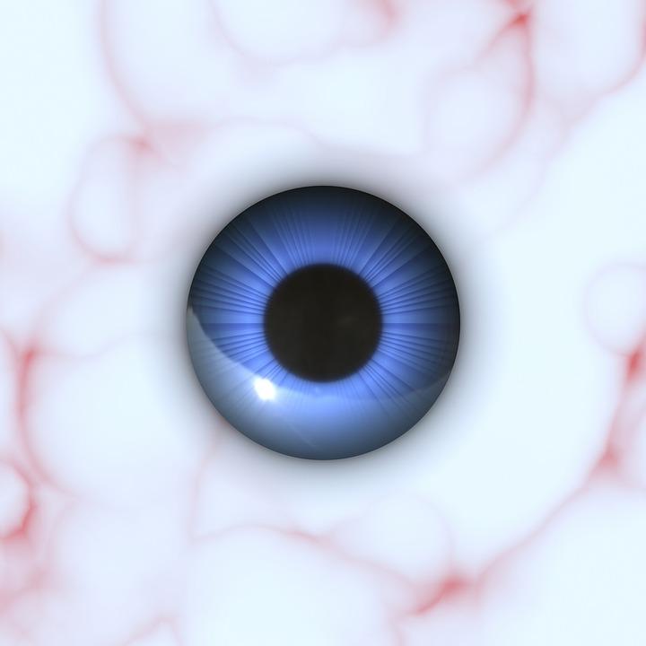 Anatomie Auge Augapfel · Kostenloses Bild auf Pixabay