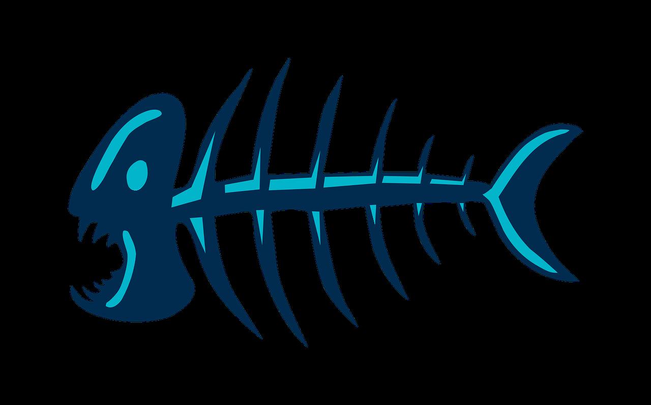 Fish Bones Free Image On Pixabay