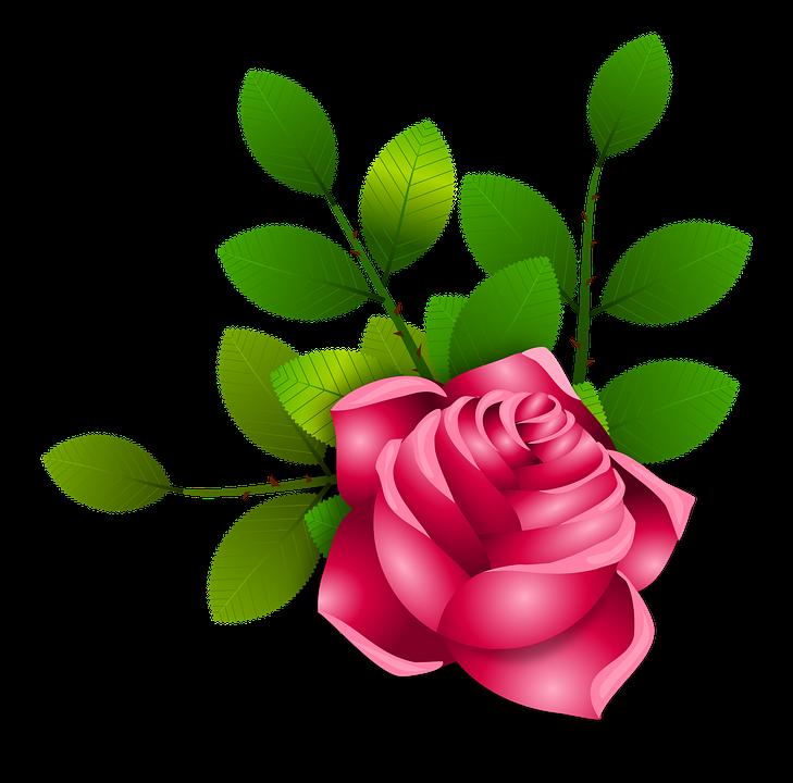 rosas flores floral  u00b7 imagen gratis en pixabay Blue Flower Clip Art Yellow Flower Clip Art