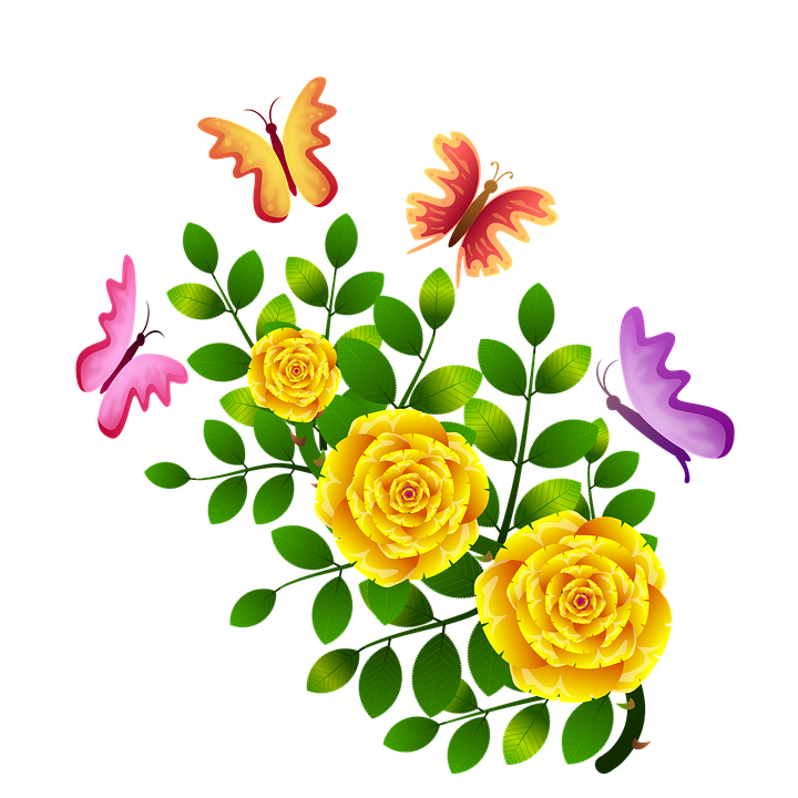 Roses Butterflies Flowers Free Image On Pixabay