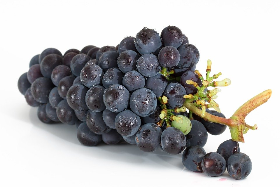 Raisins, Bouquet, Fruits, Viticulture, Sweet, Red