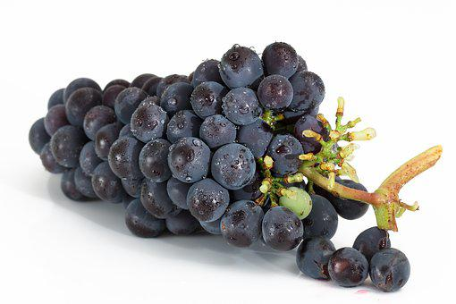 Grapes, Bunch, Fruit, Viticulture, Sweet