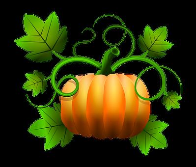 Pumpkin Halloween November Fruits Vegetabl